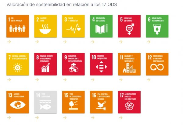 Comunique publicamente as suas realizações no âmbito da Agenda 2030